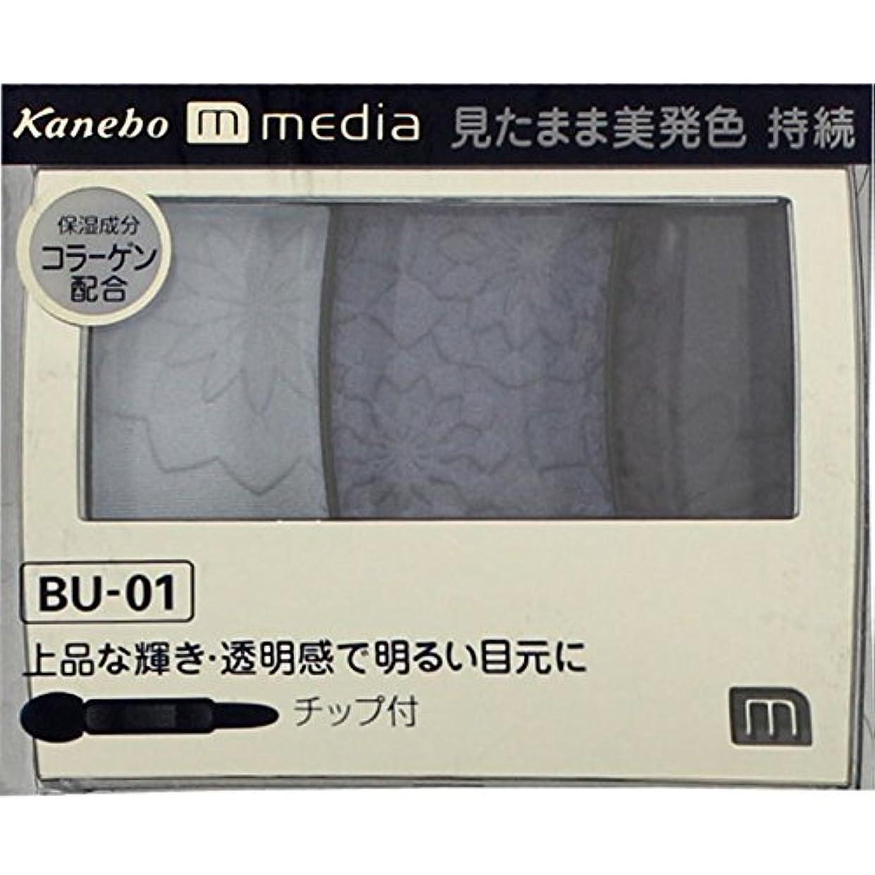 中間シャー中間【カネボウ】 メディア グラデカラーアイシャドウ BU-01