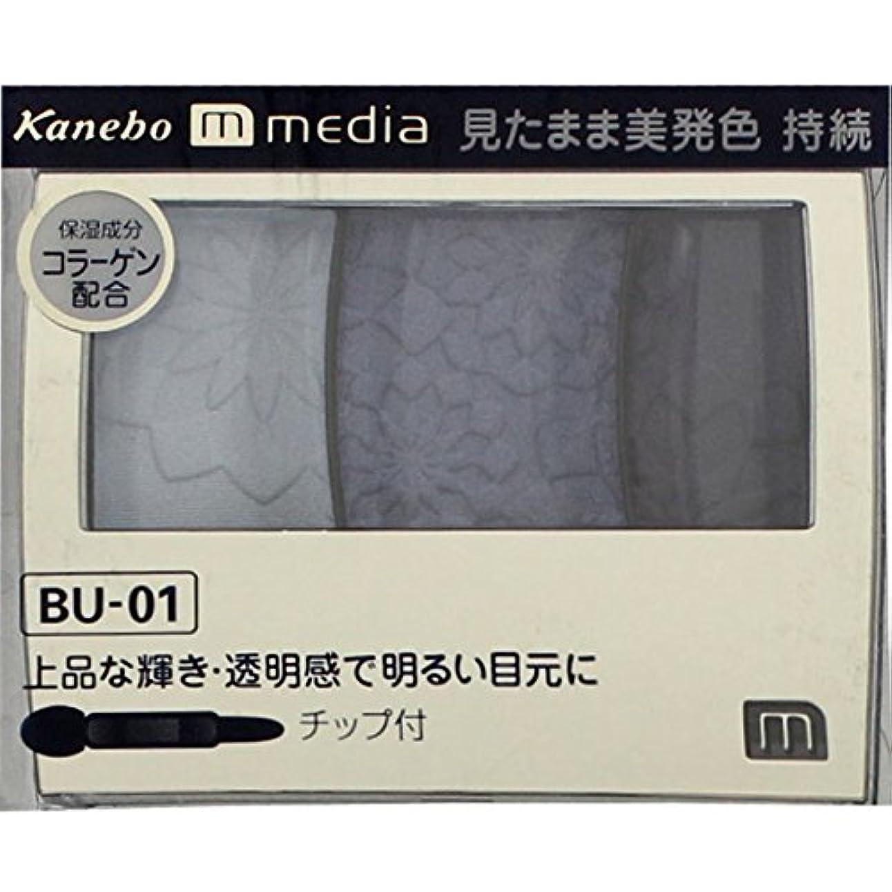 不条理船酔い難破船【カネボウ】 メディア グラデカラーアイシャドウ BU-01