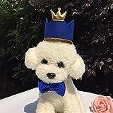 キュート小型犬猫誕生日パーティーコーンハットCrown and Bow Tie Collar Set with and pom-pomトッパーペットの猫子猫コスプレコスチュームアクセサリーチャームグルーミングHeadwearヘアアクセサリー PE-SU-16