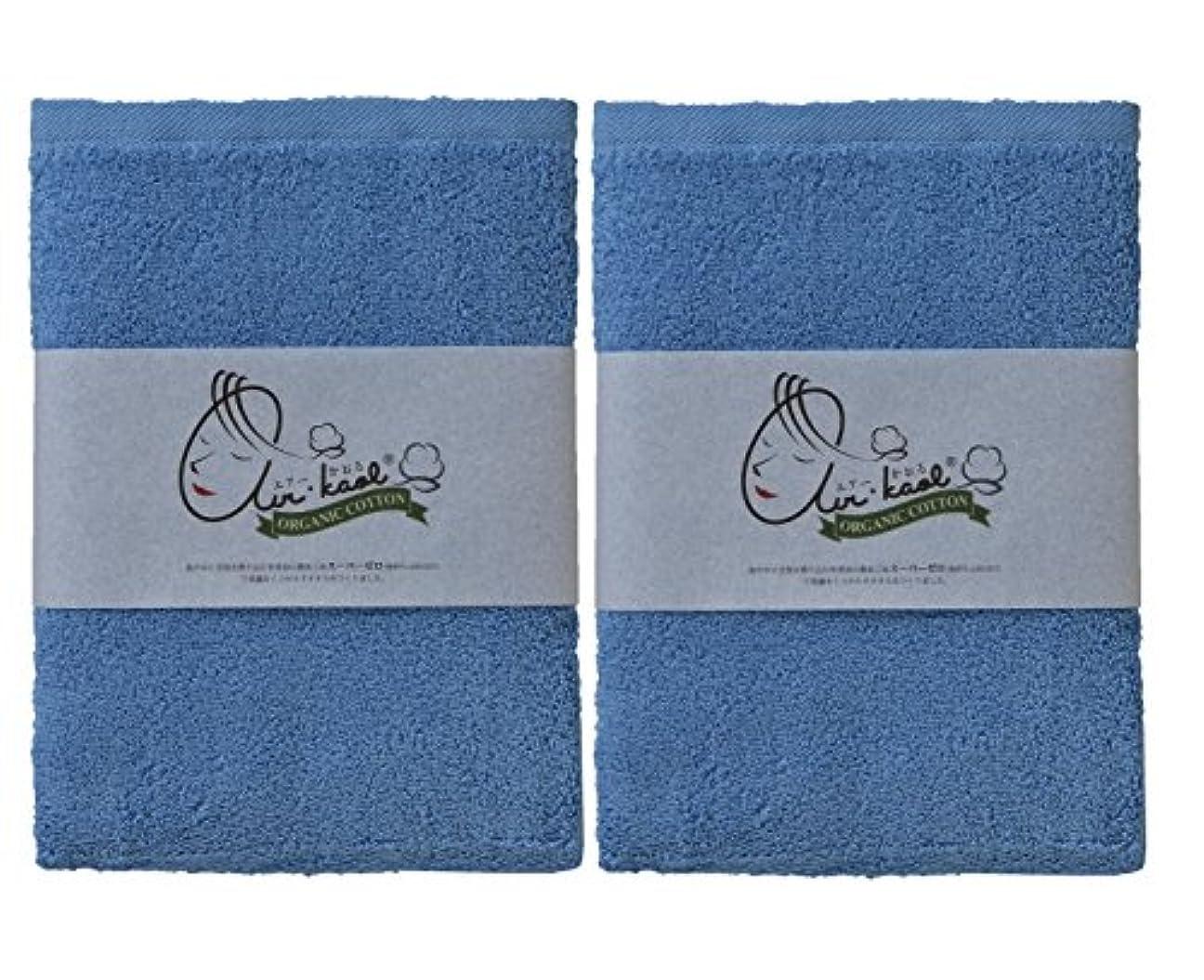 プット凍る上級エアーかおる バスタオル ブルー 60×120×1cm 2個セット