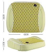 GzPuluz シートカバー 汚れ防止 超通気性 車ファミリーバックウエスト電気振動マッサージUSB充電ピローマット (Color : Matcha)