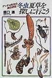 冬虫夏草を探しに行こう―ゲッチョ先生の森の学校