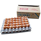 黄身の色 と 濃厚 度合いが ハンパない 卵 養鶏場 直送 業務用 鶏卵 いきいきたまご (80個)
