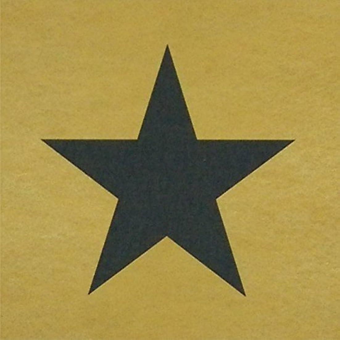内訳揮発性肖像画ステンシルシート 星 3サイズ型紙 10cm