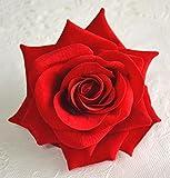 薔薇のフラワーコサージュ ヘアコサージュ 収納ケース付 (レッド)