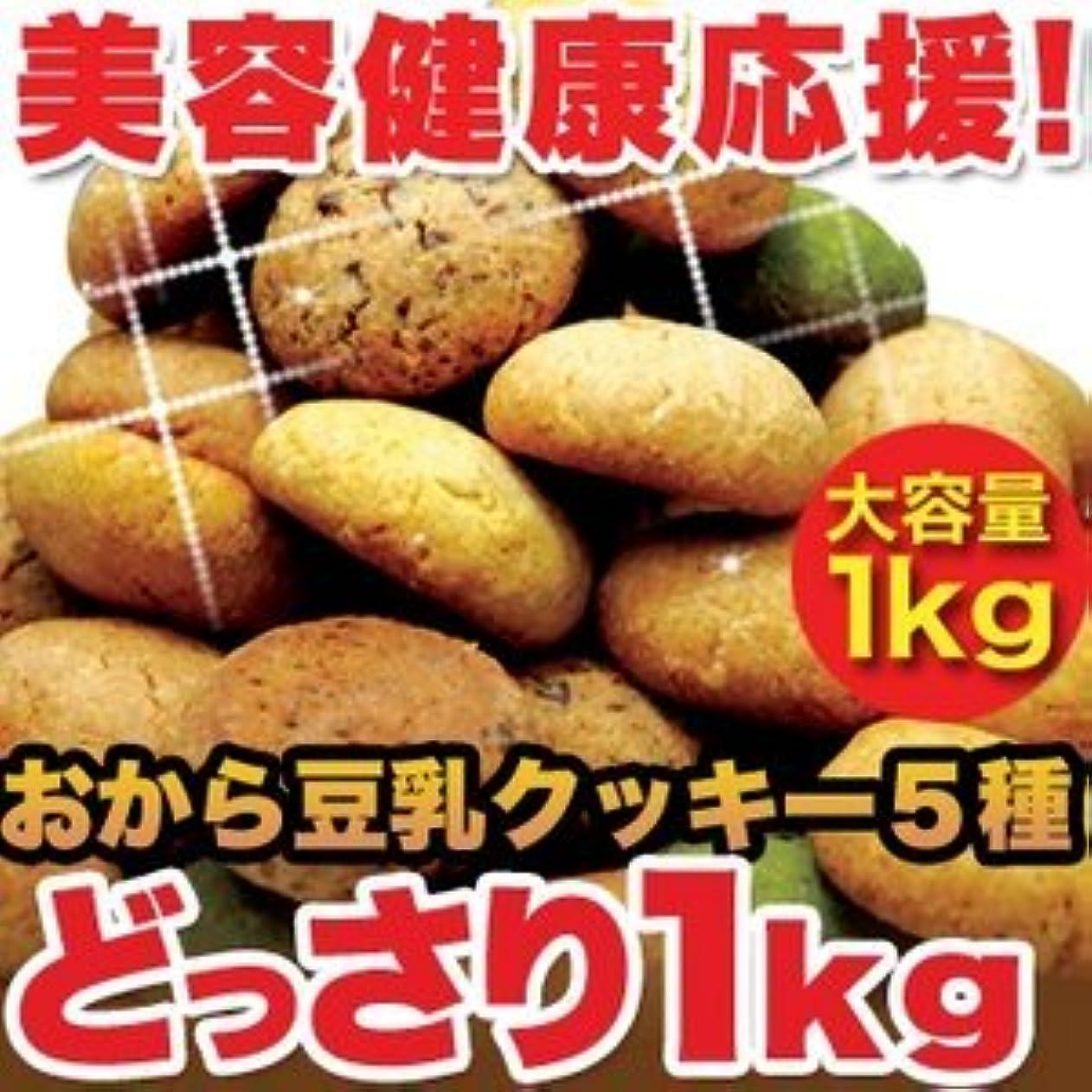 無法者影のある説明的ほろっと柔らか☆ヘルシー&DIET応援☆新感覚満腹おから豆乳ソフトクッキー1kg