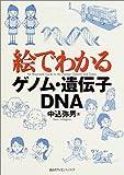 絵でわかるゲノム・遺伝子・DNA (KS絵でわかるシリーズ)