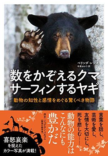 数をかぞえるクマ サーフィンするヤギ 動物の知性と感情をめぐる驚くべき物語