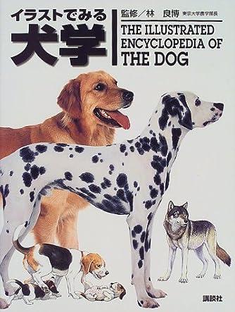 イラストでみる犬学 (KS農学専門書)