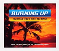 Burning Up-Ultimate Guide to M