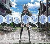 【Amazon.co.jp限定】REBEL FLAG(期間生産限定盤)(DVD付)(オリジナル・ジャケットサイズステッカー付)