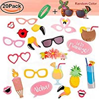 Party Photo Booth Props Kit,R ? HORSE Summer Party Luau Party Decoration Dress Up Accessories for Holiday Beach Party (20 Count+1 Party Sunglasses) [並行輸入品]