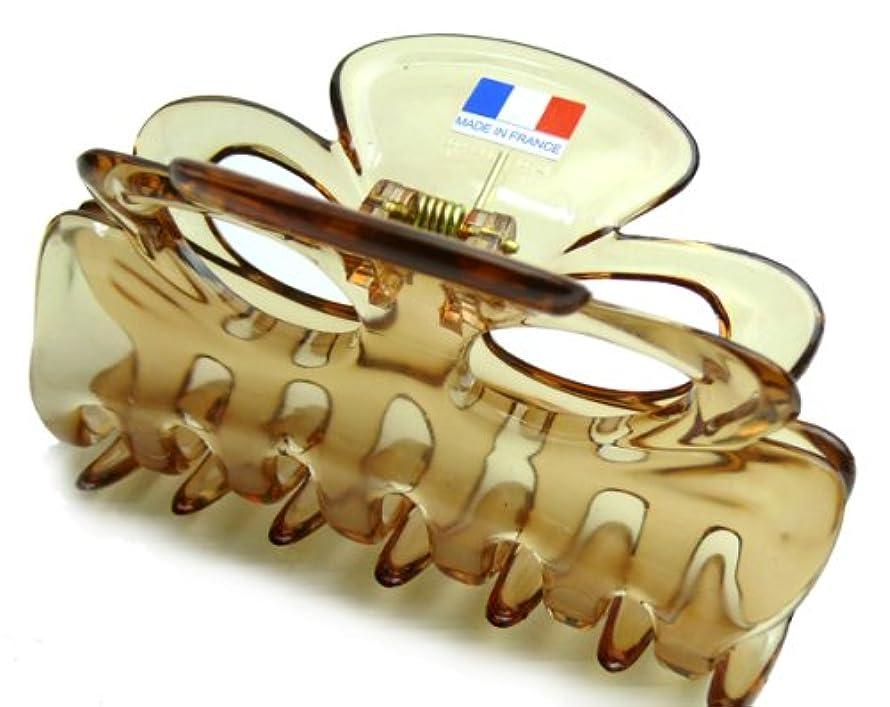 広範囲驚くばかり国民投票フランスクリップ 薄茶
