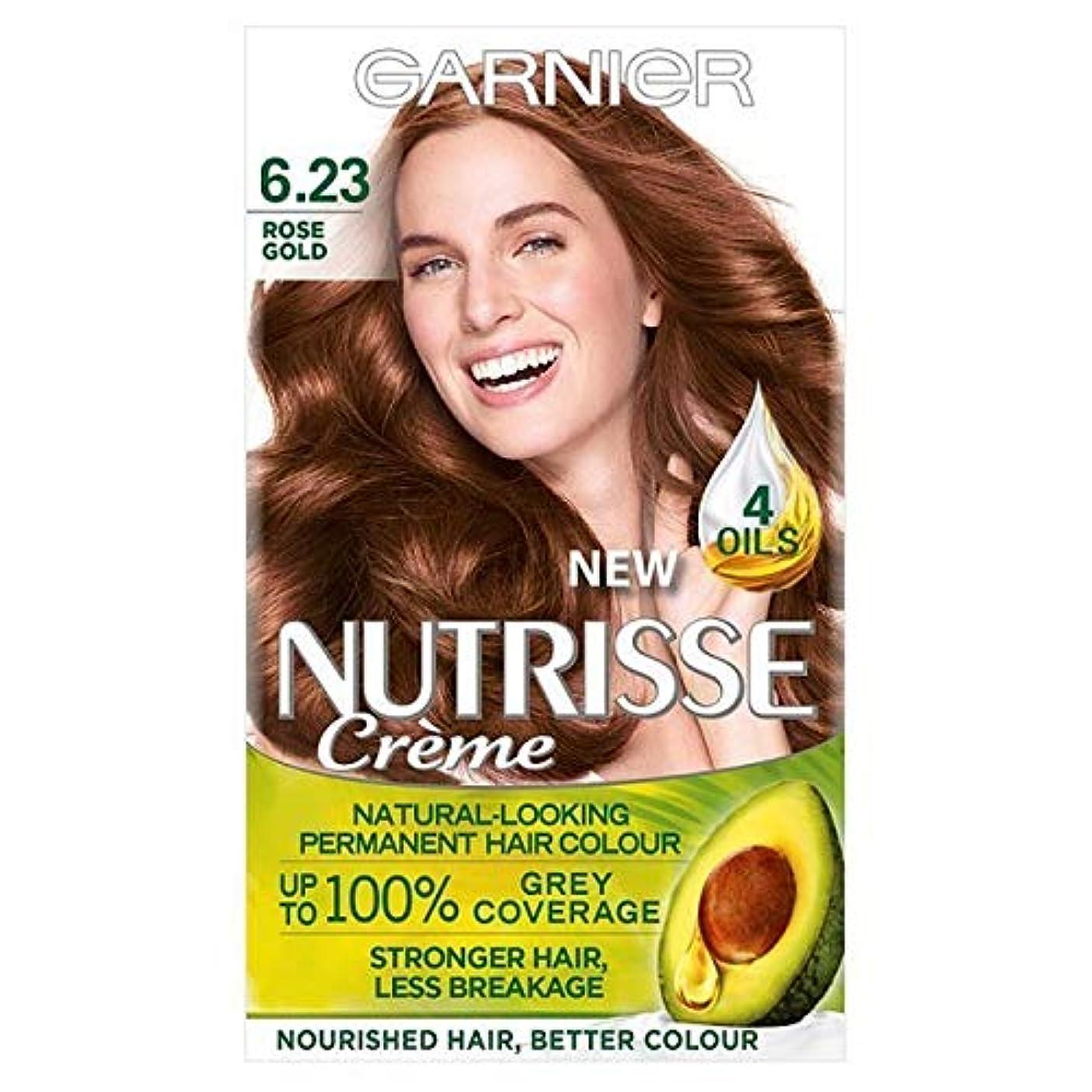 歌う突き出すエトナ山[Garnier ] ガルニエNutrisse永久染毛剤は金茶色の6.23をバラ - Garnier Nutrisse Permanent Hair Dye Rose Gold Brown 6.23 [並行輸入品]