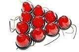 選べる5色 LED 16 発 サイド バス マーカー ライト ランプ 【ADVANTAGE】 トラック 24V 12V 車 に (d . レッド10個)