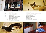 猫式生活のすゝめ: 猫飼いが知っておきたい100のコト 画像