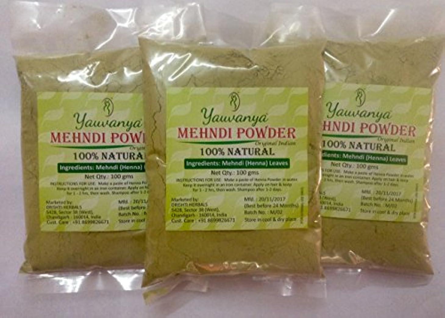 カバレッジ牧草地ファンYauvanyaオリジナルインディアンピュア&ナチュラルヘナ(Mehndi)for Hair - 3X100 gms (Yauvanya Original Indian Pure and Natural Henna (Mehndi...