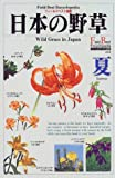 日本の野草 夏 (フィールドベスト図鑑)