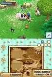 「牧場物語 ようこそ!風のバザールへ」の関連画像
