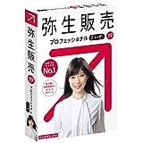 【旧商品】弥生販売 19 PRO 2U通常版