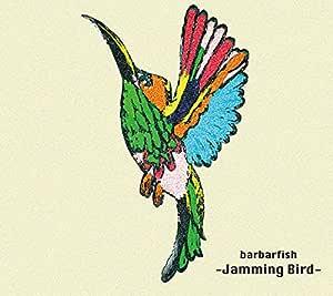 JAMMING BIRD