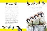 にっぽんのスズメと野鳥仲間 画像