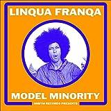 MODEL MINORITY [Analog]