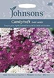 【輸入種子】 Johnsons Seeds Candytuft Fairy Mixed キャンディタフト(イベリス)・フェアリー・ミックス ジョンソンズシード