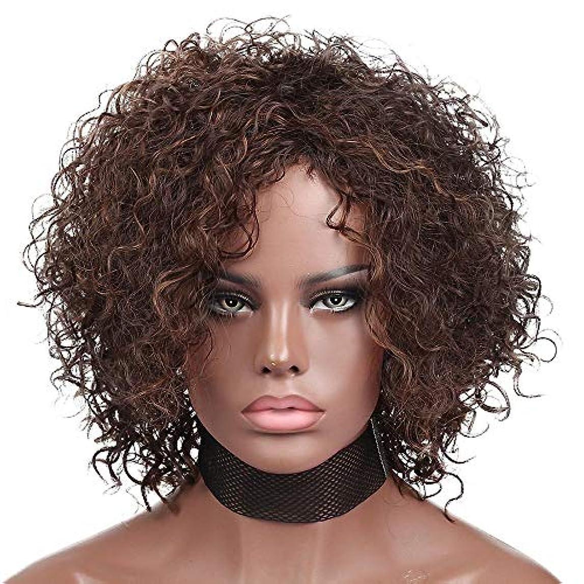 プログラムがんばり続けるフェリーWASAIO 短い巻き毛のかつらブラジル合成女性カールかつらコスプレハロウィンブラックウェーブファッション爆発ヘッド (色 : ブラウン)