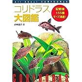 コリドラス大図鑑―All About Corydoras