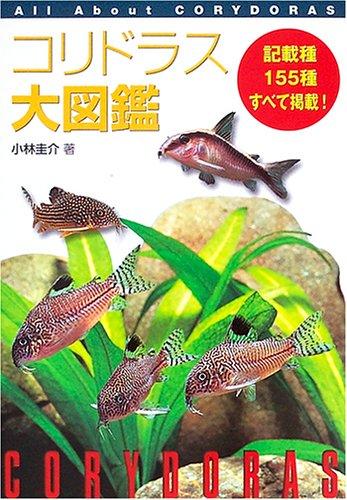 コリドラス大図鑑—All About Corydoras