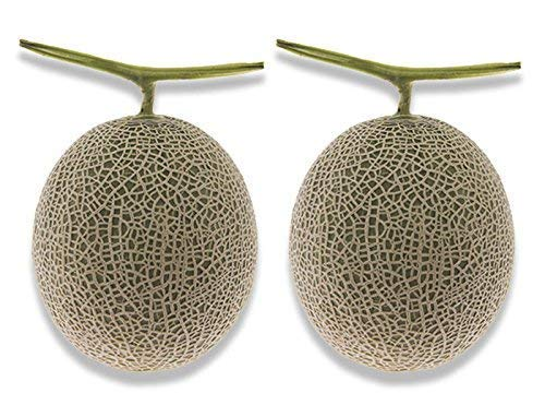 フルーツなかやま アールスメロン 2個 大きさ15cm以上 糖度12度以上 重さ1.2k以上