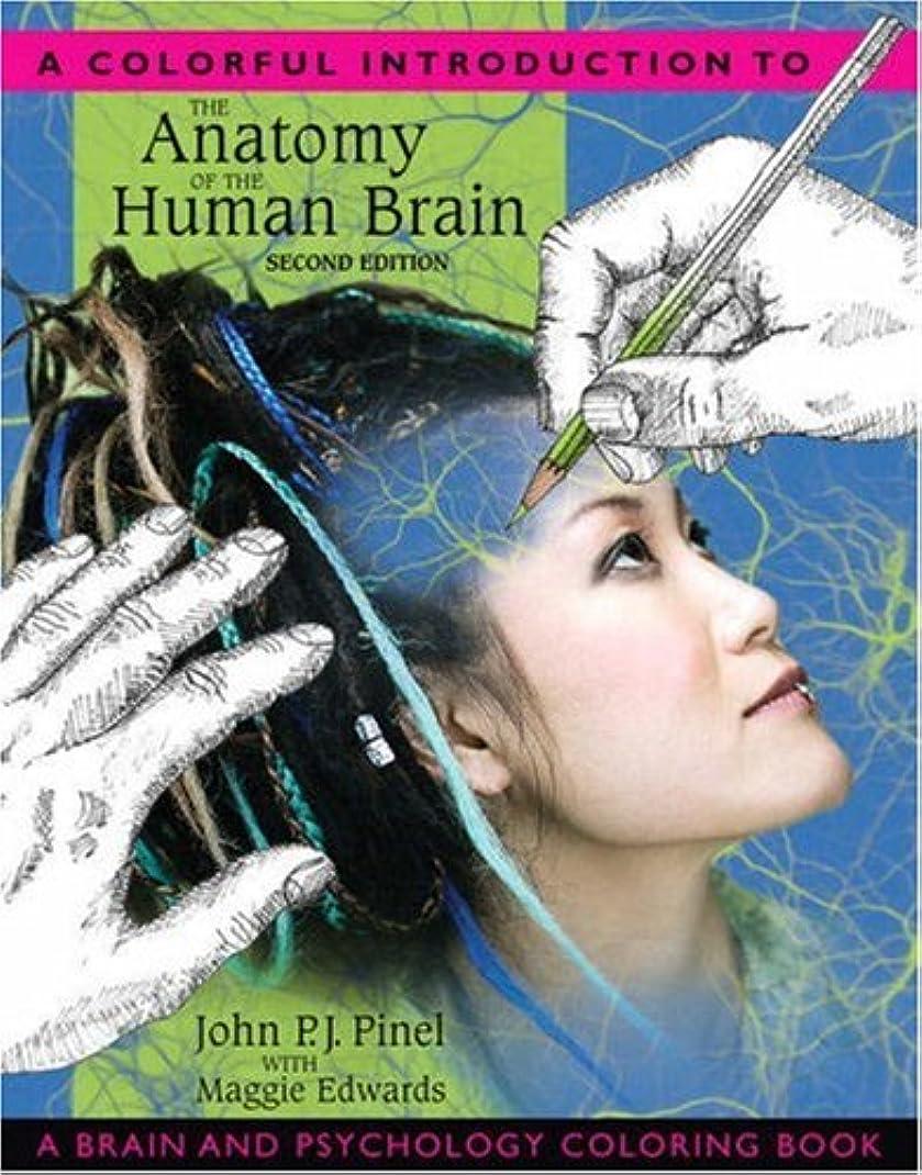ひどくしおれたマネージャーColorful Introduction to the Anatomy of the Human Brain, A: A Brain and Psychology Coloring Book