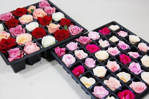 薔薇(バラ)風呂セット(2段)