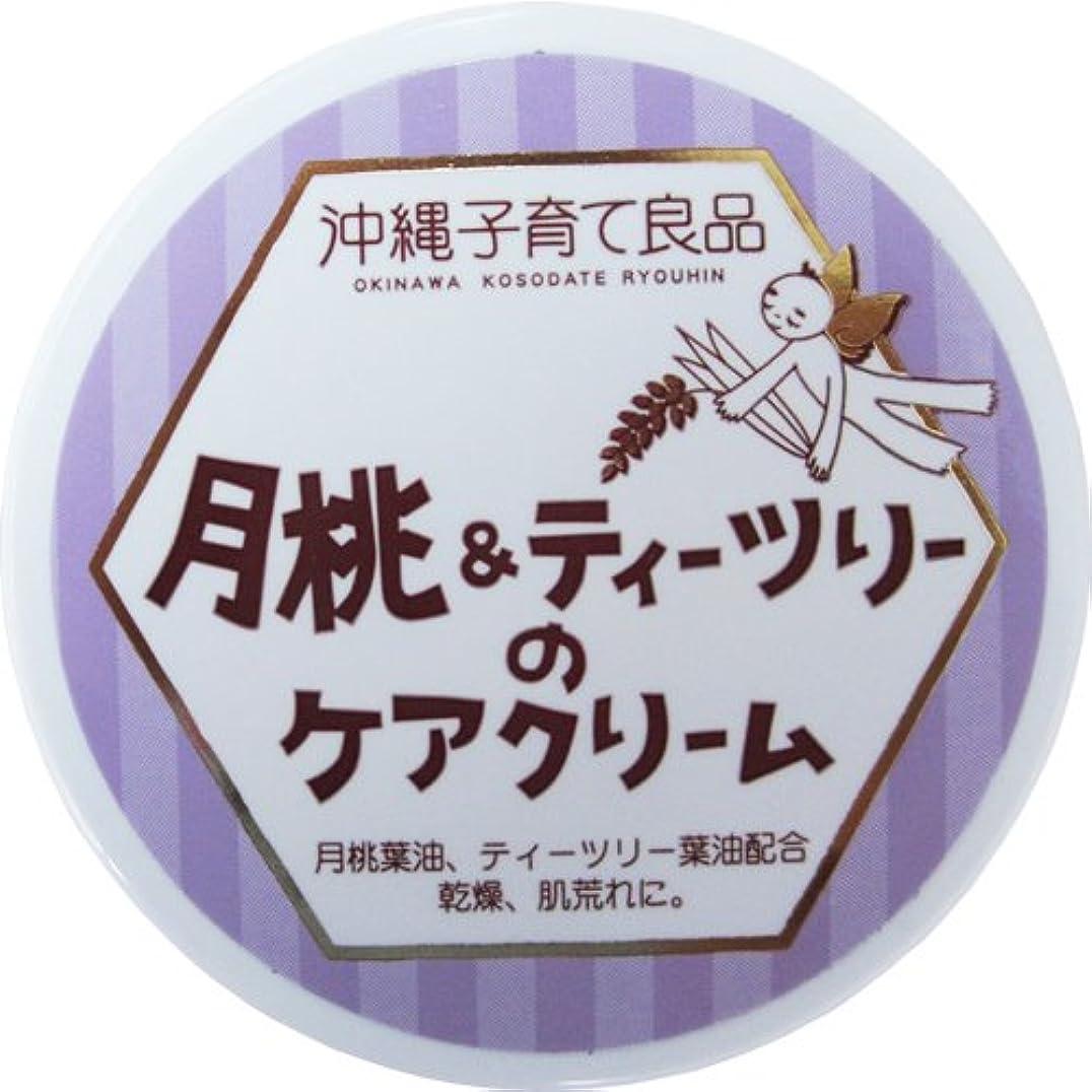 急速な無傷地殻沖縄子育て良品 月桃&ティツリーのケアクリーム (25g)