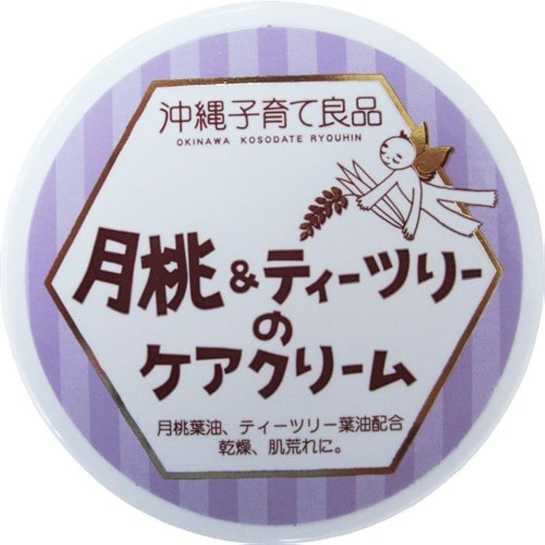 結婚式拡散する同一の沖縄子育て良品 月桃&ティツリーのケアクリーム (25g)