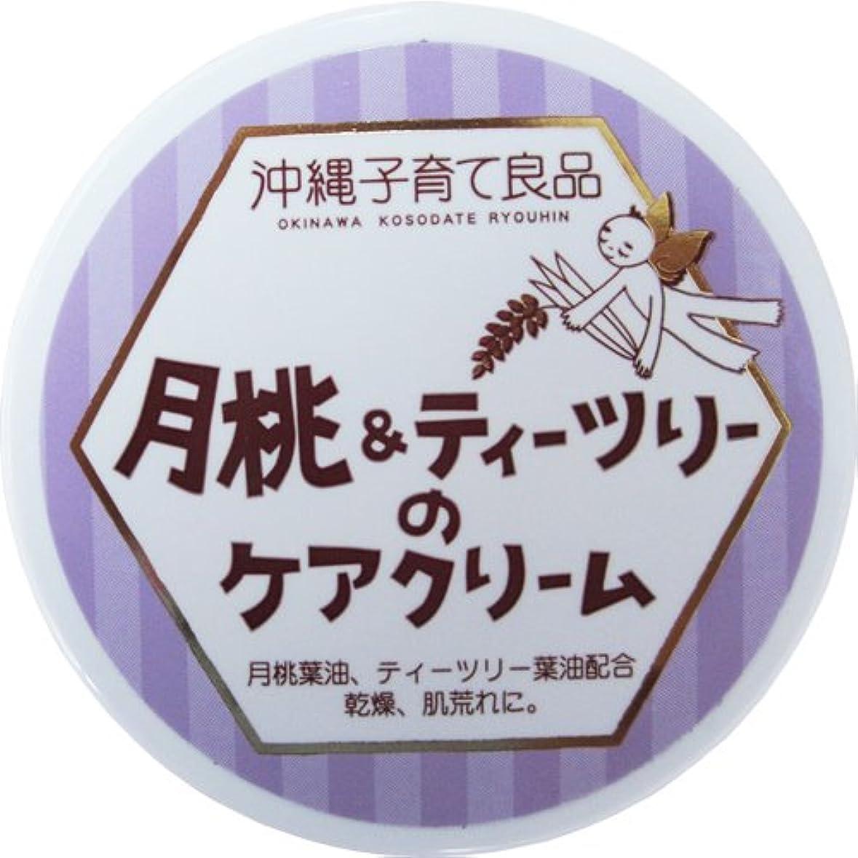予備控えめなテーブルを設定する沖縄子育て良品 月桃&ティツリーのケアクリーム (25g)