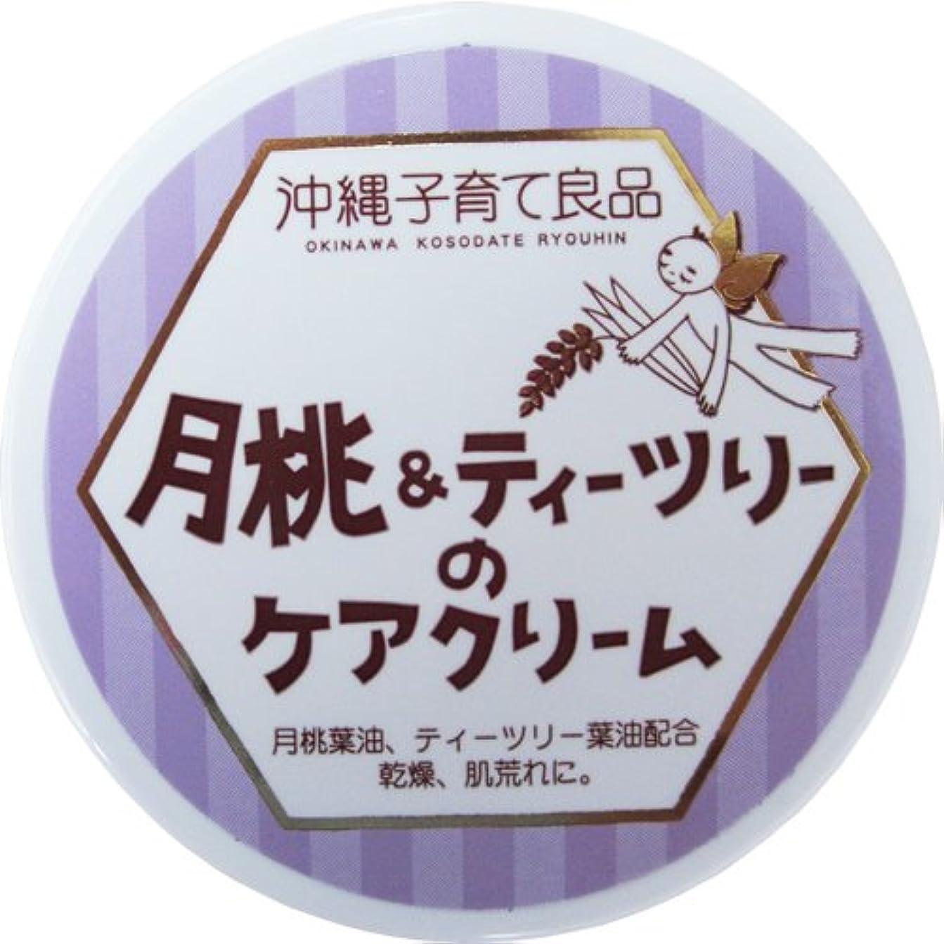 手荷物キャプチャー白い沖縄子育て良品 月桃&ティツリーのケアクリーム (25g)