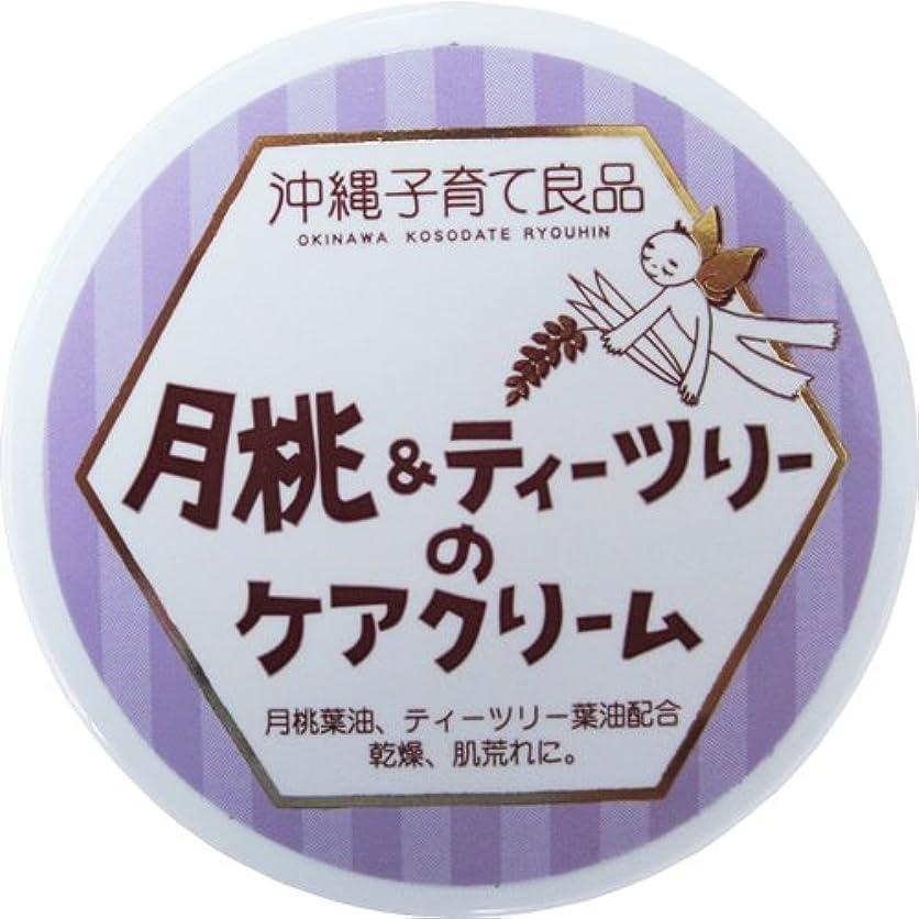 かんたん系譜ふりをする沖縄子育て良品 月桃&ティツリーのケアクリーム (25g)