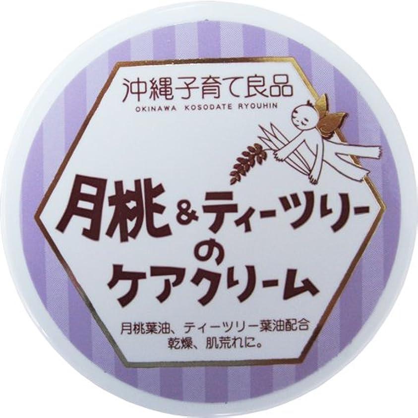 温度計陽気な配管沖縄子育て良品 月桃&ティツリーのケアクリーム (25g)