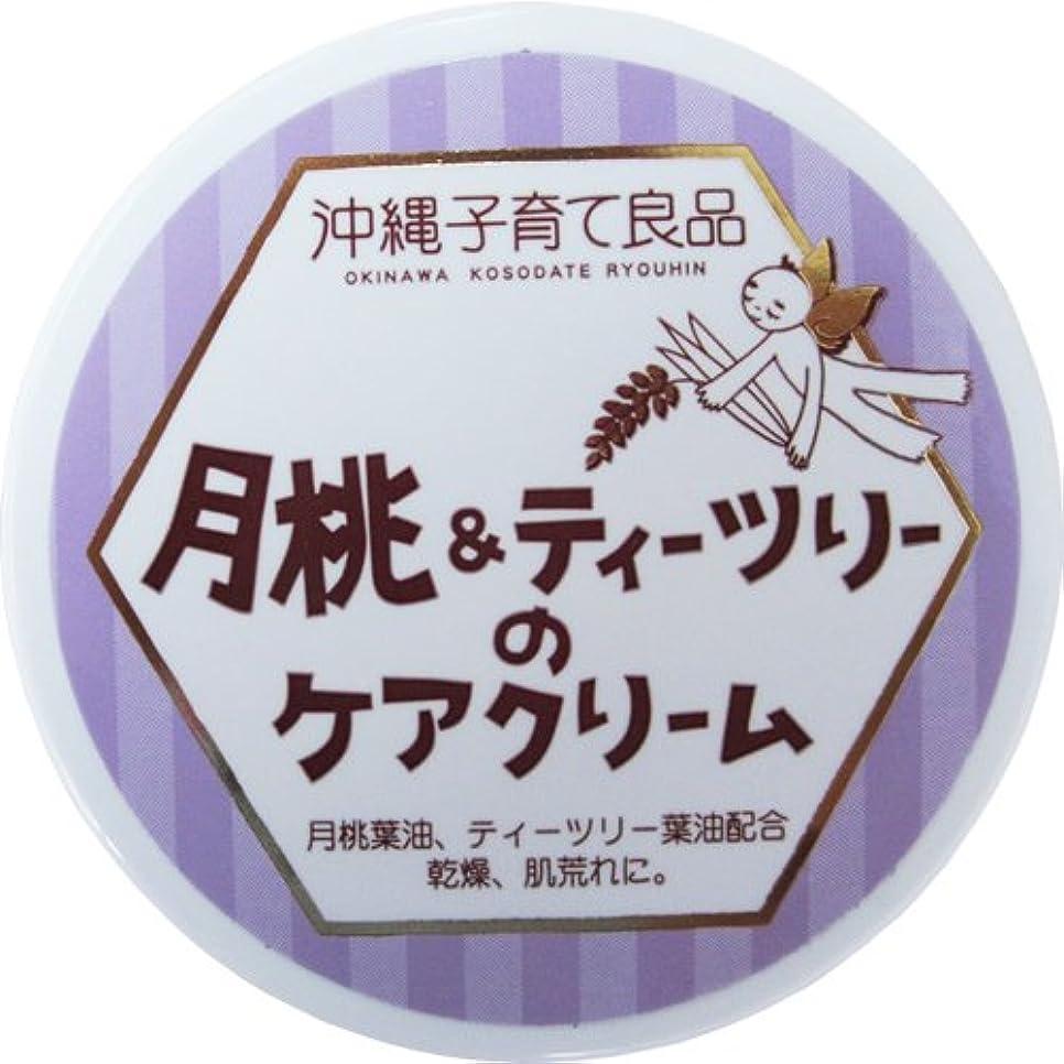 マッシュ許される故意に沖縄子育て良品 月桃&ティツリーのケアクリーム (25g)