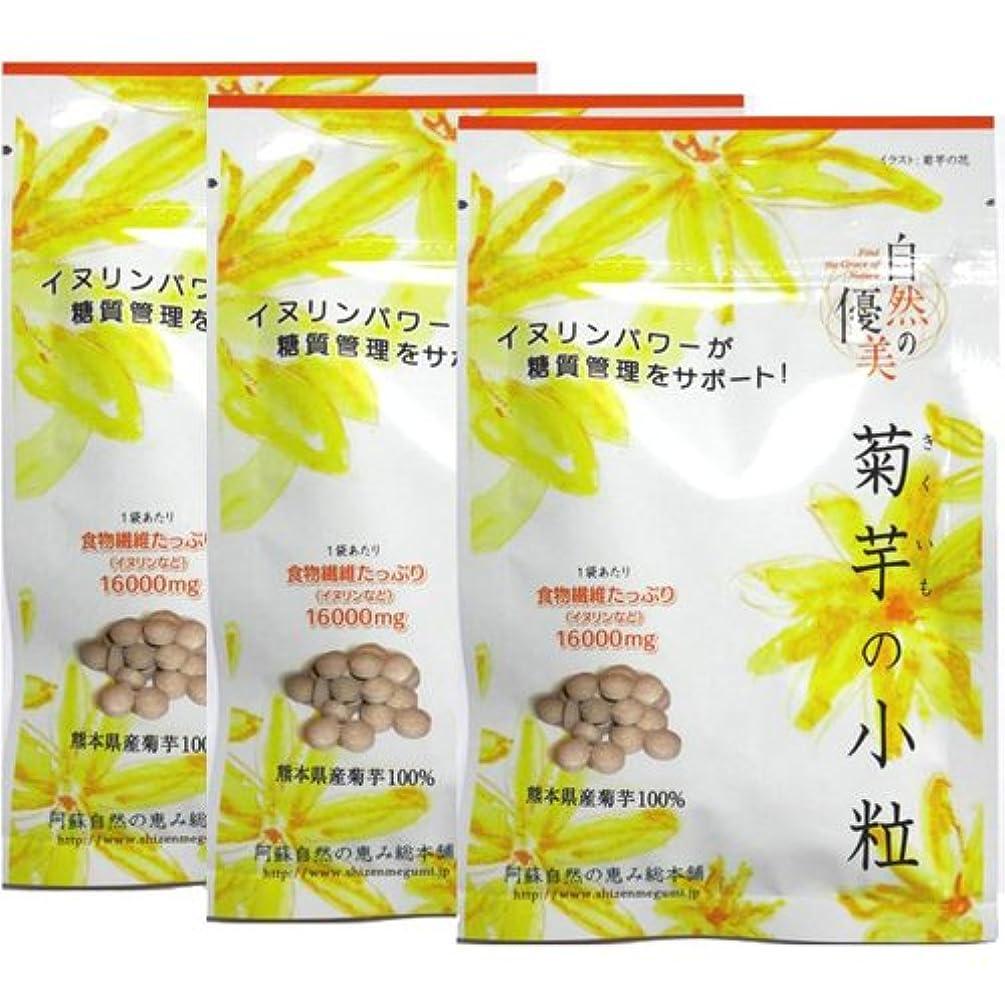 神学校かけがえのないひいきにする阿蘇自然の恵み総本舗 菊芋の小粒 100錠×3袋