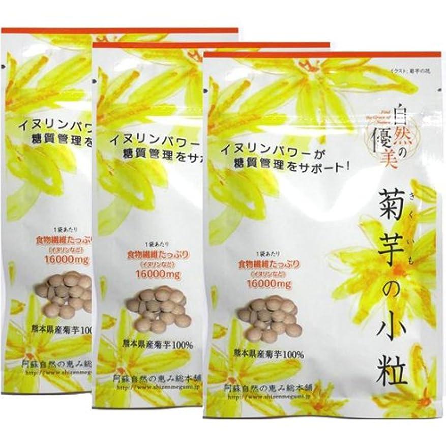理論的ジョージハンブリー厳密に阿蘇自然の恵み総本舗 菊芋の小粒 100錠×3袋
