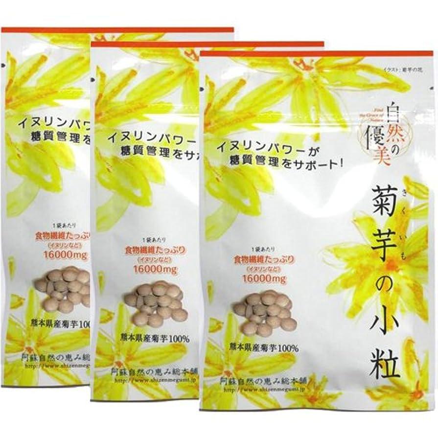 講師うんバンク阿蘇自然の恵み総本舗 菊芋の小粒 100錠×3袋