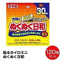 日本製 興和 貼るカイロ ミニ ホッカイロ ぬくぬく日和 衣類に貼るカイロ 30個入り × 4個 (120個入)