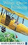 Wings Above Billabong (English Edition)