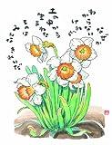 花の詩画集 種蒔きもせず 画像
