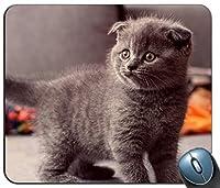 マウスパッド、灰色の猫モードで、マウスパッドをカスタマイズします。