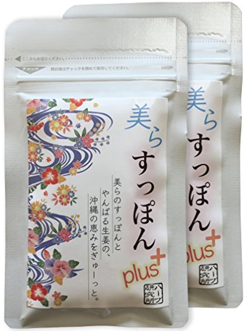 雨の攻撃感嘆符温活 ぷるぷる 沖縄 すっぽん + やんばる しょうが のサプリ 62粒×2パックで10%OFF