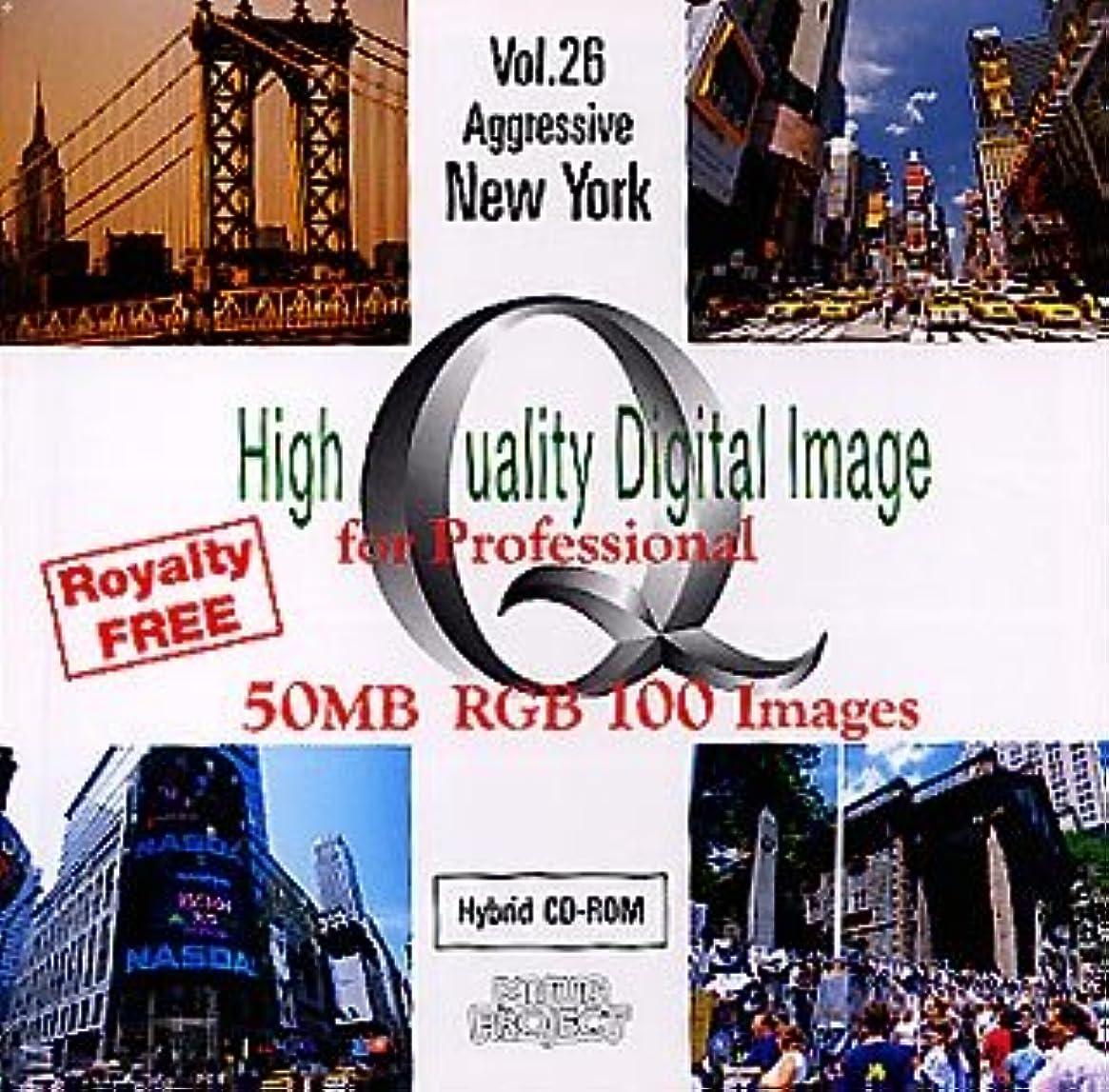 残り物驚くばかり意識的High Quality Digital Image for Professional Vol.26 Aggressive New York